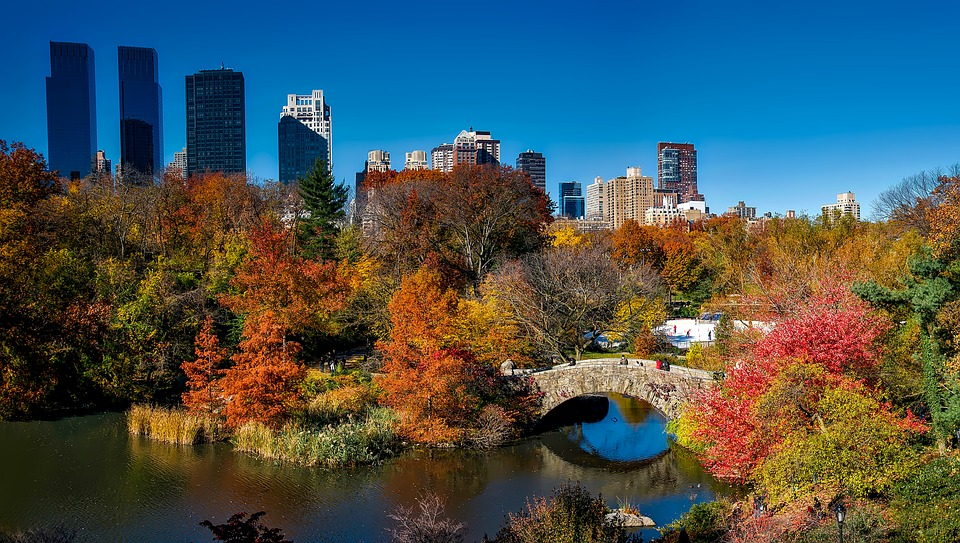 Central Park, New York City, Urban, Fall, Autumn