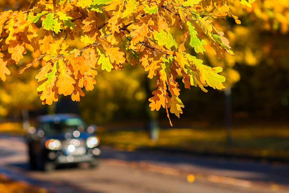 Autumn Car Outdoor 183 Free Photo On Pixabay