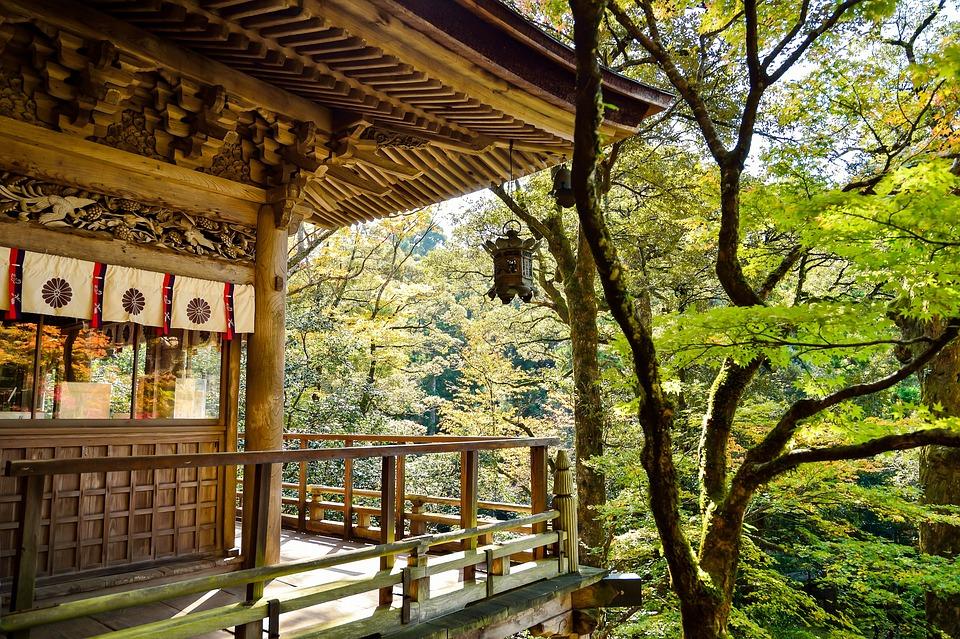 日本, 風景, 自然, 屋外, 日本の景色, 和, 緑, 日本文化, 寺, 観光地, 木, 秋