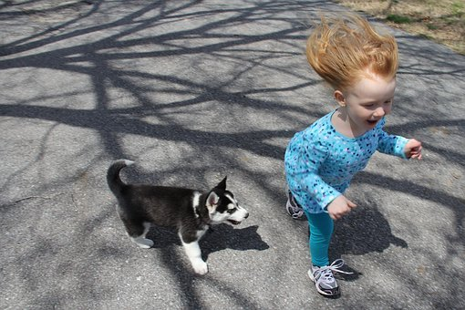 Puppy, Child, Run, Fun, Dog, Pet, Girl