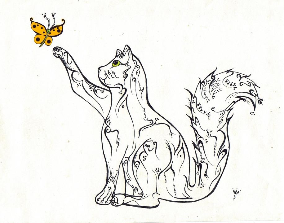 felino desenho À mão livre imagens grátis no pixabay