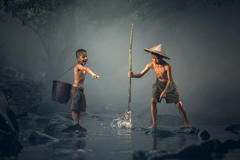 Children, Fishing, Teamwork, Together, Boys, Young