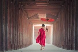 Umbrella, Buddhism, Monk, Monastery