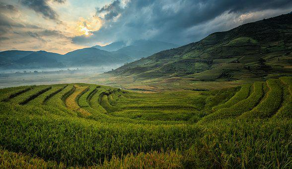 Agriculture, Asia, Cat, China, Cloud