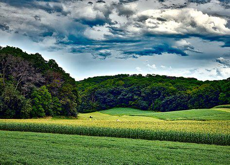Wisconsin, Landscape, Sky, Clouds, Corn