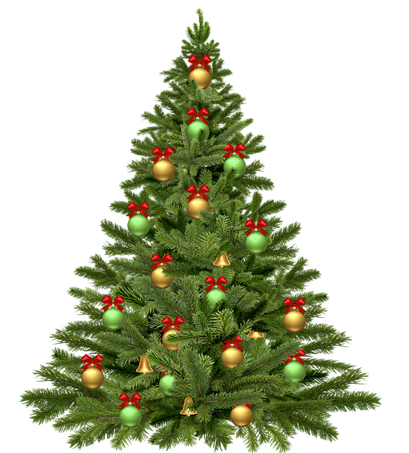Chistmas Trees: Free Illustration: Christmas Tree, Holidays, Christmas