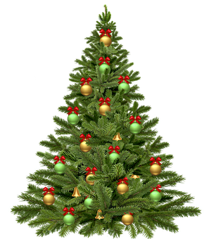 Christmas Tree Holidays Christma