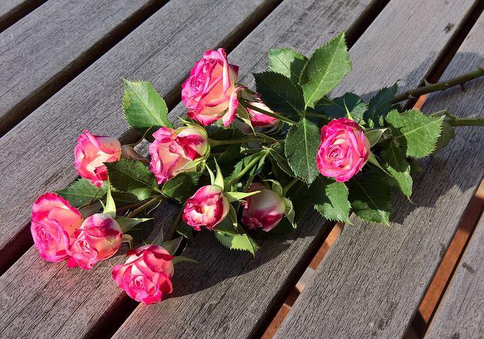 Харьков, дикая роза букет