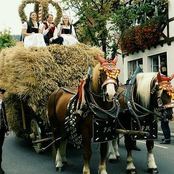 Fellbach, Erntedankfest