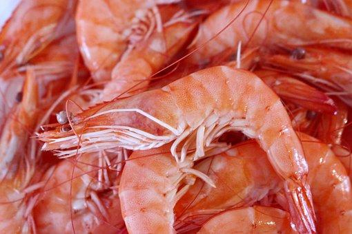Shrimp Seafood Crustaceans Sea Food Kitche