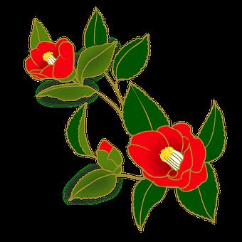 椿, 花, 赤, 和風, 冬