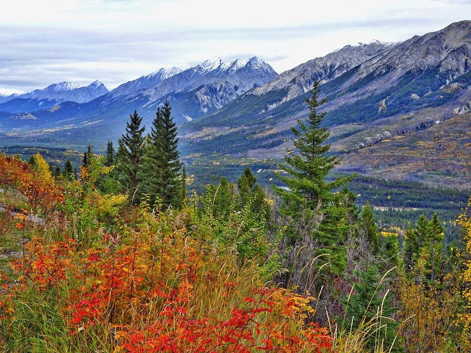 Herbst Berge Wald Kostenloses Foto Auf Pixabay
