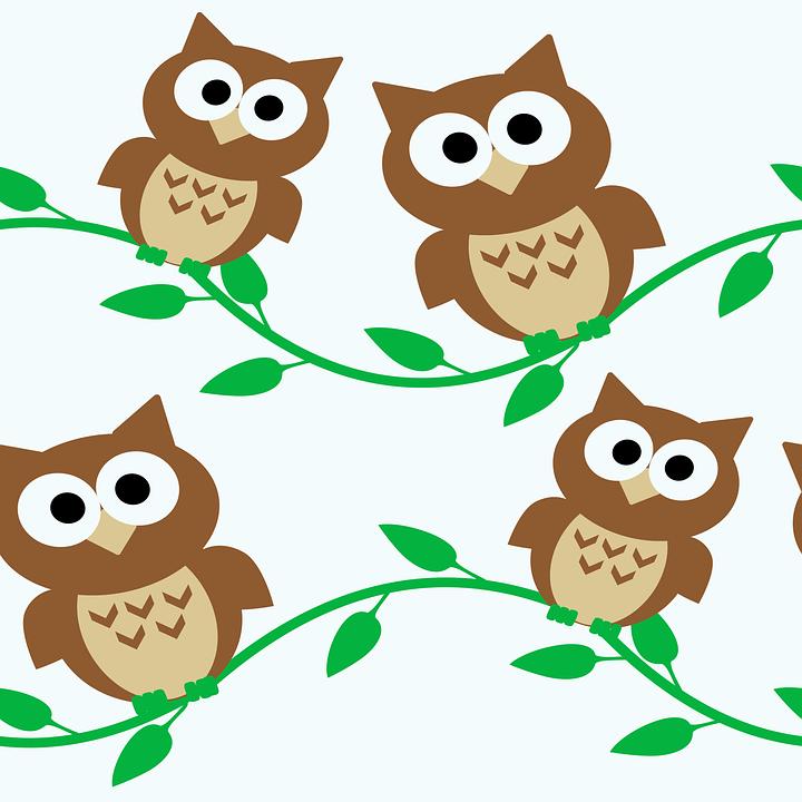 Eule Eulen Cartoon Kostenlose Vektorgrafik Auf Pixabay