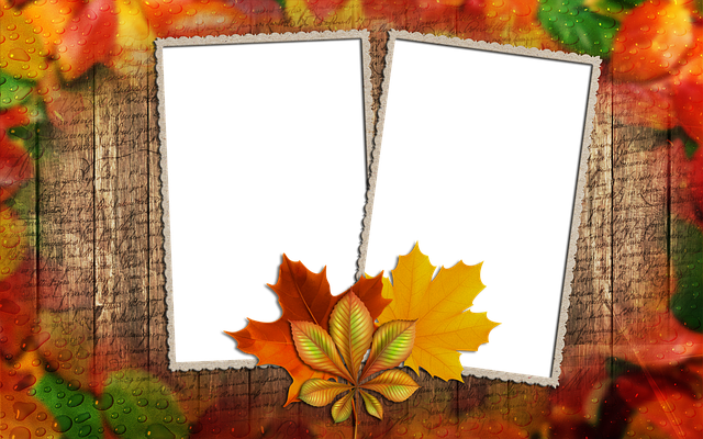 Frame Photo Autumn Leaf 183 Free Image On Pixabay