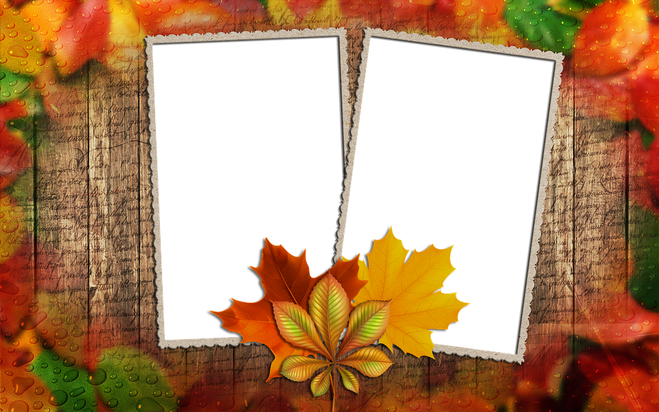 Frame Photo Autumn Leaf · Free image on Pixabay