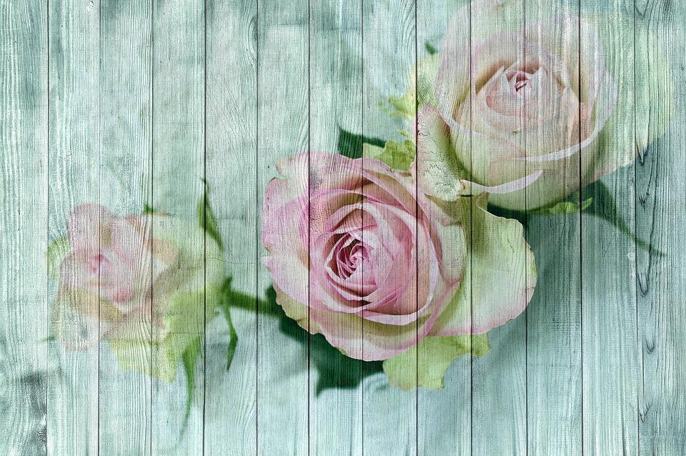 free illustration vintage wood rose poster free image on pixabay 1815011. Black Bedroom Furniture Sets. Home Design Ideas