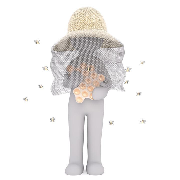 Imker, Bienenzüchter, Biene, Bauernhof, Honig, Ackerbau