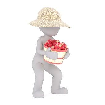 庭, ガーデニング, 庭仕事, 園芸, 庭園を維持, 庭師, 農場農業の生き物