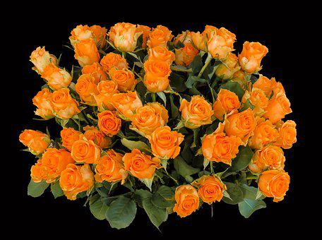 Emocje, Róż, Birthday, Powitanie, Bukiet