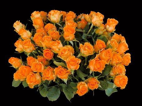 Emotions Roses Birthday Greeting