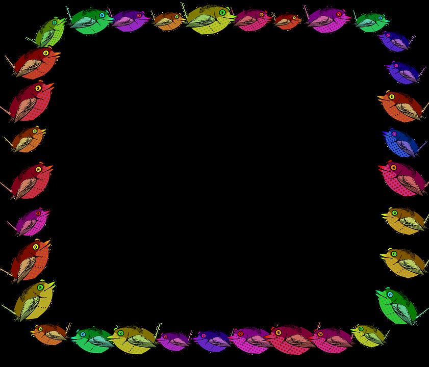 Vögel Niedlich Tiere · Kostenlose Vektorgrafik auf Pixabay