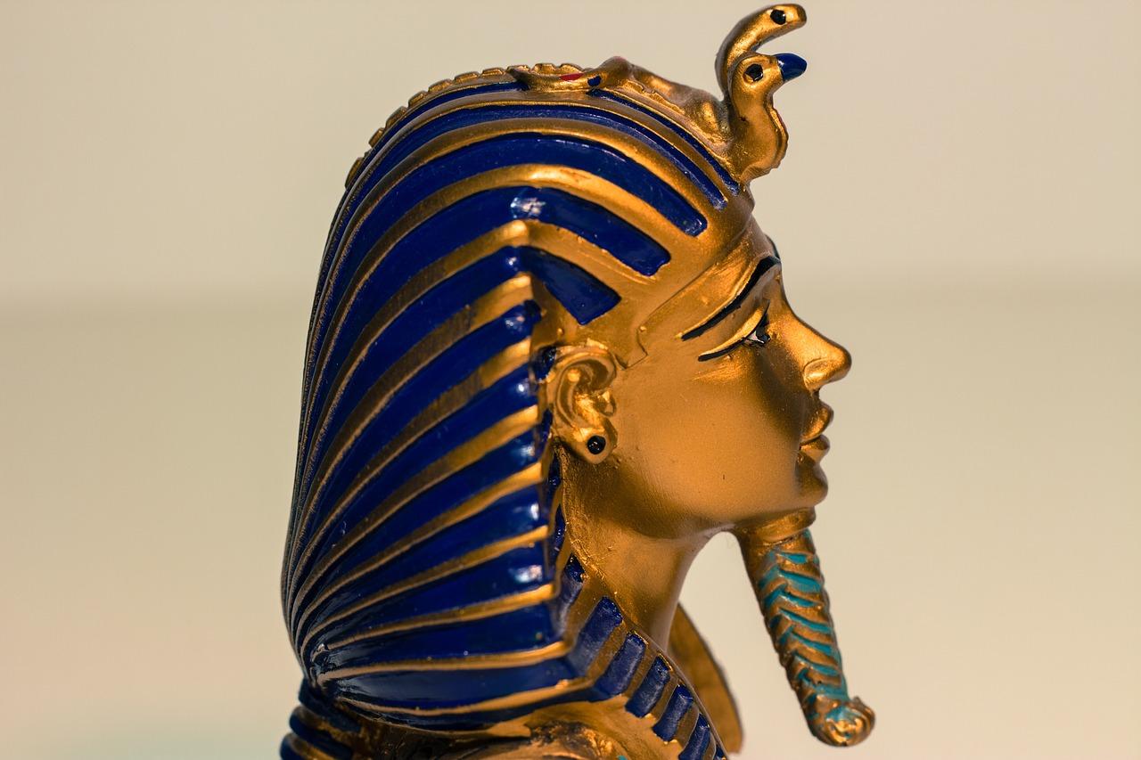 если египет картинки фараон сортов декоративного подсолнечника