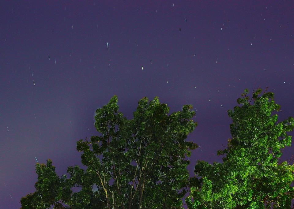 toiles ciel arbre nuit espace lune - Arbre Ciel