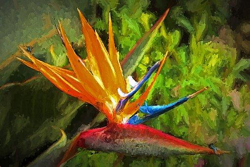 鳥の楽園, 花, アート, Photopainting, 花柄, 赤, 植物