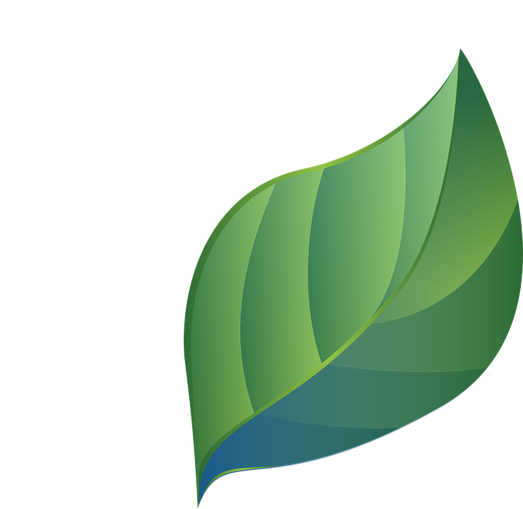 leaf blue green stylized 183 free vector graphic on pixabay