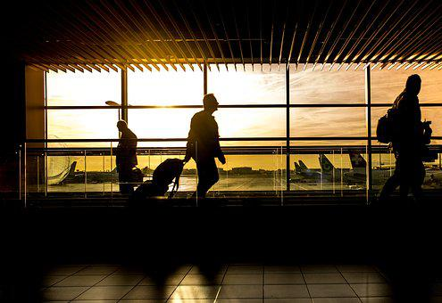Airport Man Travel Traveler Passenger Pers