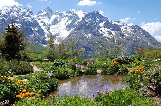 Hautes-Alpes, Col Du Lautaret, Jardin
