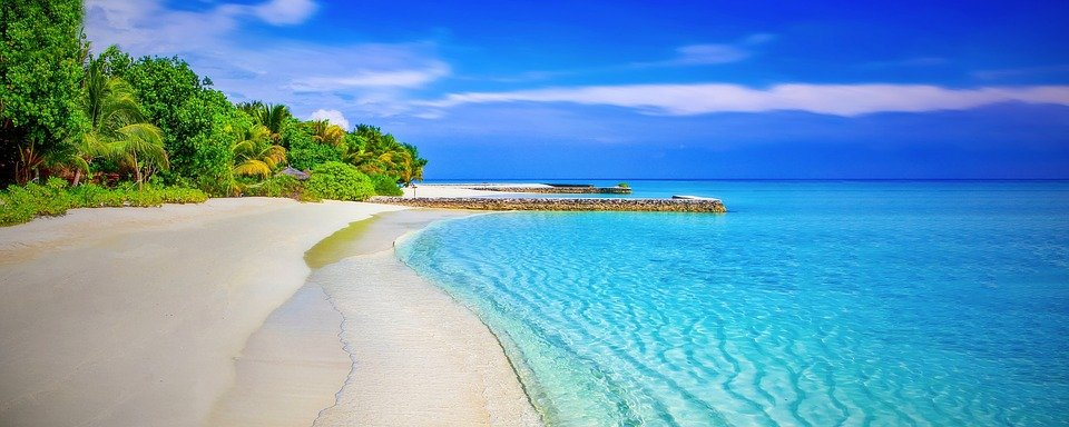 Beach, Spiaggia Di Sabbia, Paradiso, Palme, Mare, Ocean