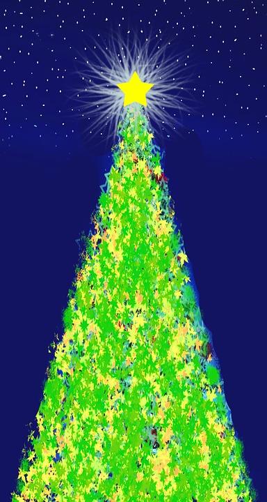 Weihnachtsstern Für Tannenbaum.Weihnachtsbaum Weihnachtsstern Kostenloses Bild Auf Pixabay
