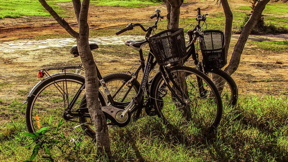 Bicycles, Nature, Fall, Bike, Leisure, Sport, Activity