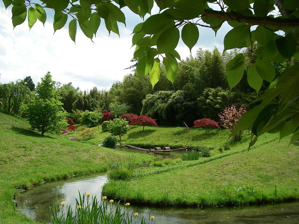 Japanischer Garten Bambus · Kostenloses Foto auf Pixabay