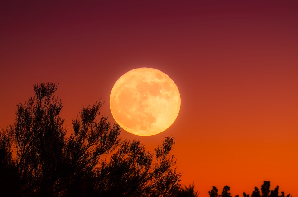 Harvest Moon, Full Moon, Sky, Night, Sunset, Dusk