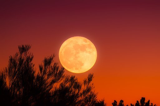 Harvest Moon, Full Moon, Sky, Night
