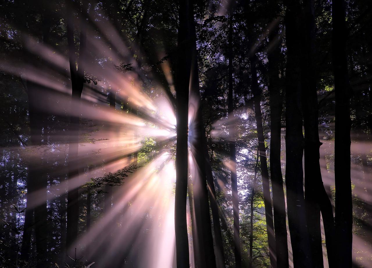как сфотографировать лучи света сожалению, большая