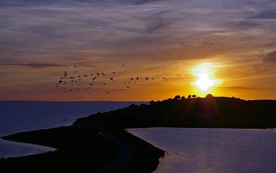 Puesta Del Sol, Dinamarca, Mar