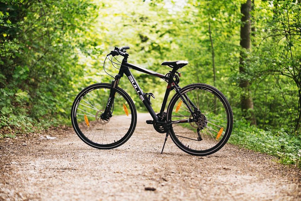 Воспитанники Толочинской школы велоспорта в этом году добились значимых результатов