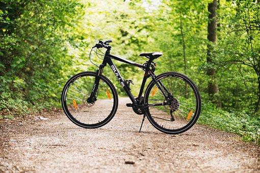 自転車, 森林, パス, スポーツ, アウトドア