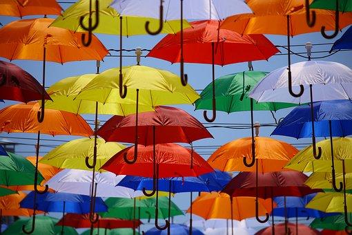 teoria ombrelli bernstein