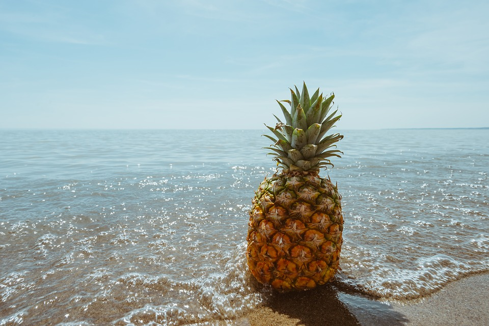 Pineapple At The Beach: Beach Coast Fruit · Free Photo On Pixabay