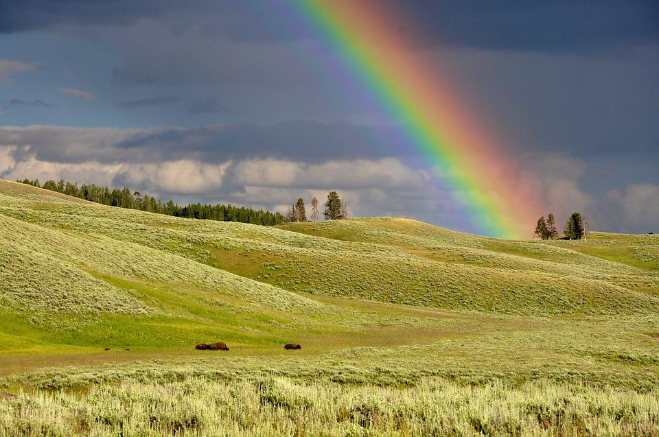 Clouds, Rainbow, Meadow, Colorful, Colourful