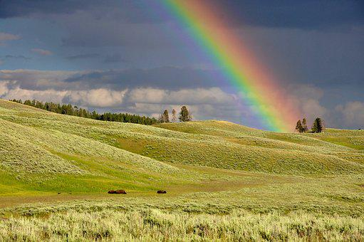 Clouds, Rainbow, Meadow, Colorful