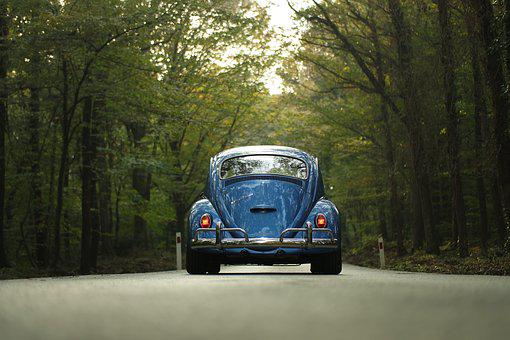 Car, Classic Car, Forest, Outdoors, Road