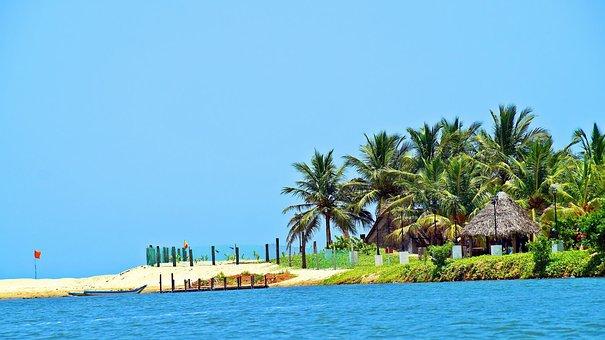 Beach, Coconut Tree, Paradise