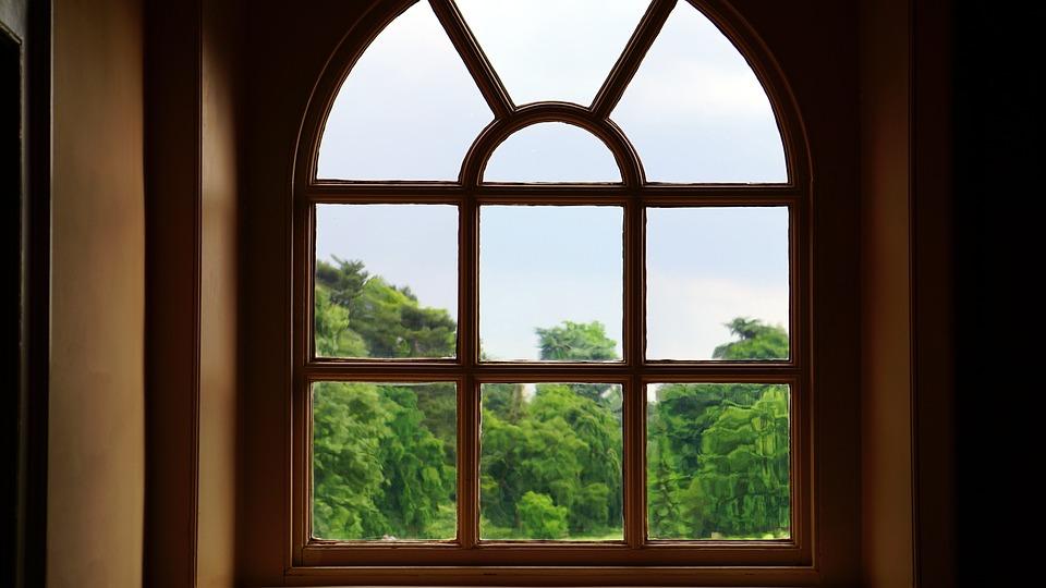 Glass, Trees, Window