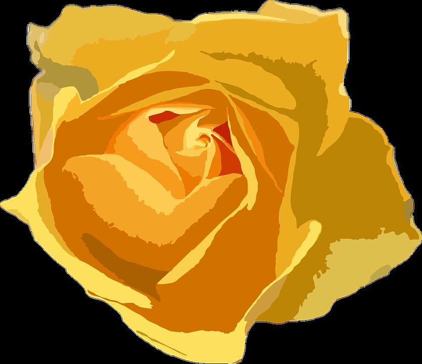 Blomst, Blomstermotiver, Botaniske, Plante, Natur