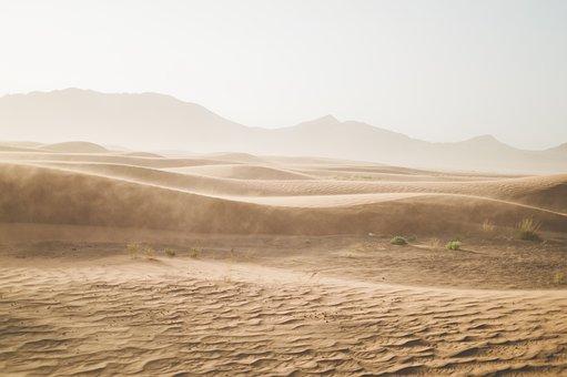Desert, Sand, Sand Dunes, Sahara, Gobi